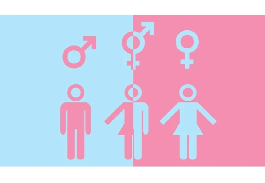 Untangling Gender and Sex: Beyond He orShe