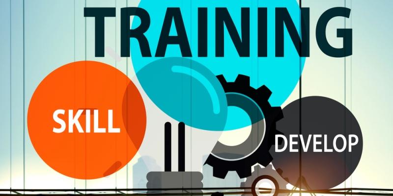Importance Of Skill Development Curriculum InSchool