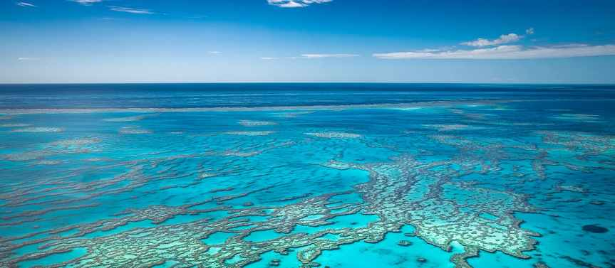 Great Barrier Reef listed 'indanger'-UNESCO