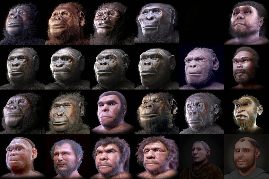 A new human ancestor : Nesher RamlaHomo