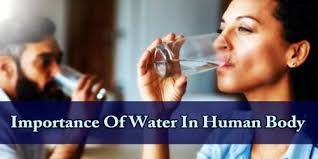 WATER AND THE HUMANBODY