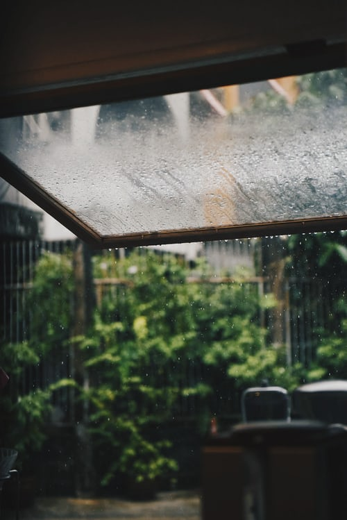Where does the smell of rain comesfrom?