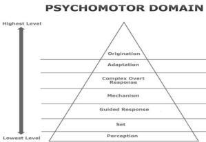 Psychomotor Domain