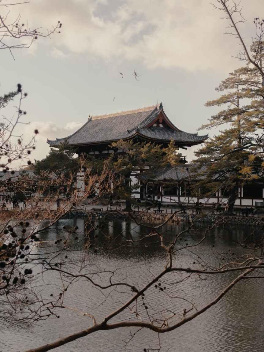 Comparison of the two Authors: Murasaki Shikibu and SeiShounagon